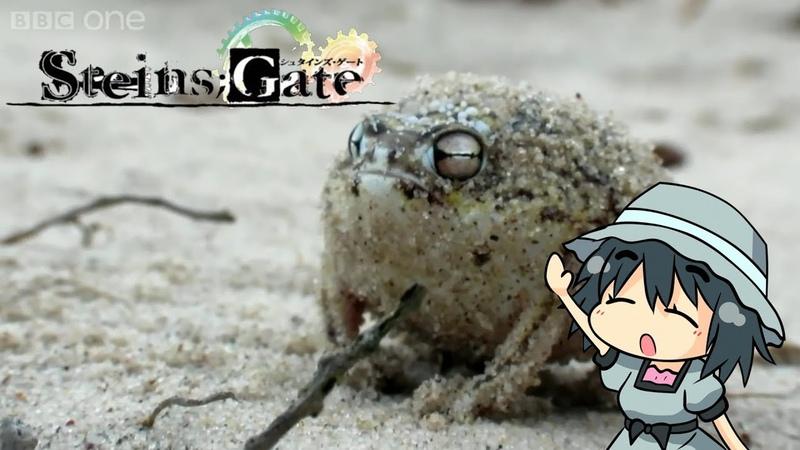 Cute Squeaking Frog Mayuri Shiina