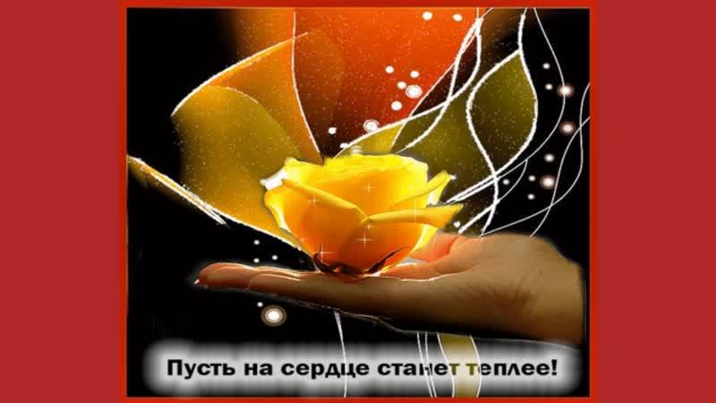 Удачного вторника Автор Зоя Беликова