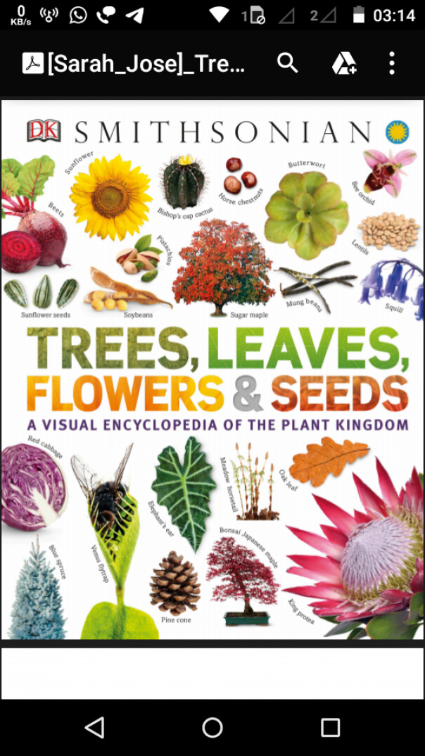 Trees, Leaves, Flowers and Seeds  A V