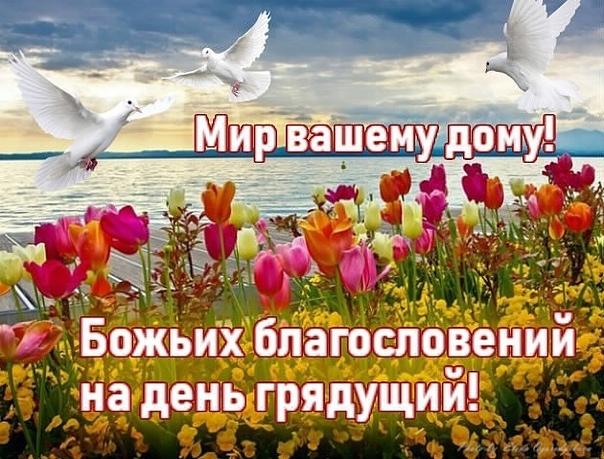 открытки божьего благословения на весь день символ спокойствия заключен