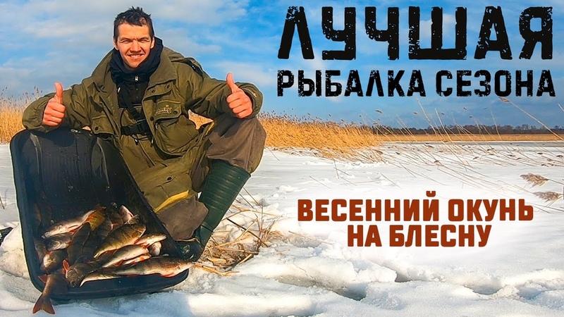 Лучшая рыбалка сезона Ловля окуня на блесну Зимняя рыбалка на Ладоге Весенний окунь жрет блесны