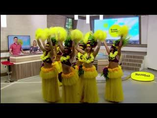 Шоу-балет Mio Latino и их руководитель Ольга Раздорских