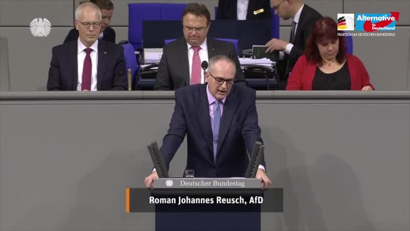 Terroristen ausbürgern! Roman Reusch AfD Fraktion Bundestag 1080p 25fps H264 128kbit AAC