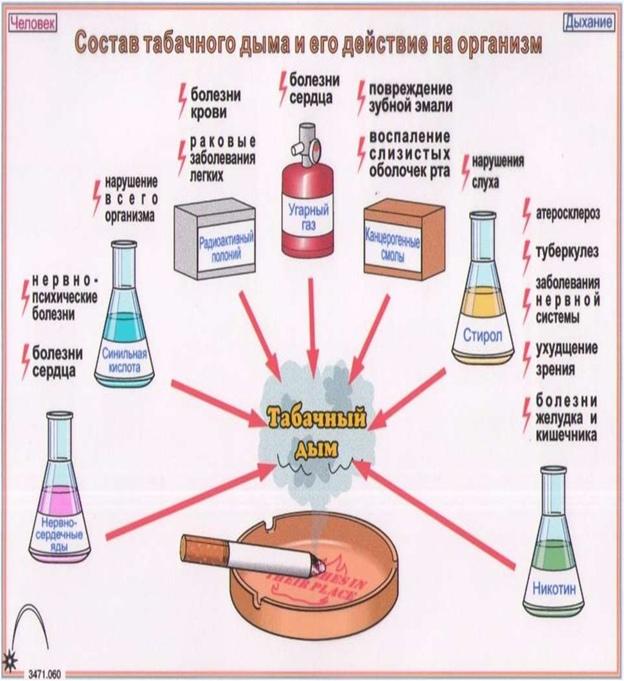 31 мая – Всемирный день отказа от курения или день без табачного дыма., изображение №3