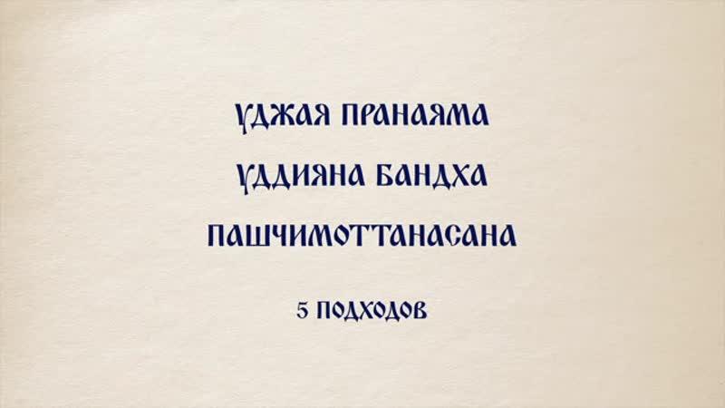 Пашчимоттанасана, Уджайи пранаяма и Уддияна бандха. Анастасия Исаева