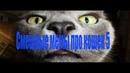 Смешные мемы про кошек 5