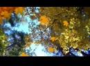 Осенний день..сл Гуля Золотова - Пагава(Гурнач)...Муз В.Гольдербайн(Гольди)...исп Валерий Яценко...монтаж В.Яценко...2019 год