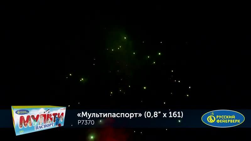 Мультипаспорт 0.8х 161