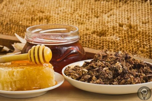 6 эффективных рецептов из меда и прополиса для защиты от варикоза
