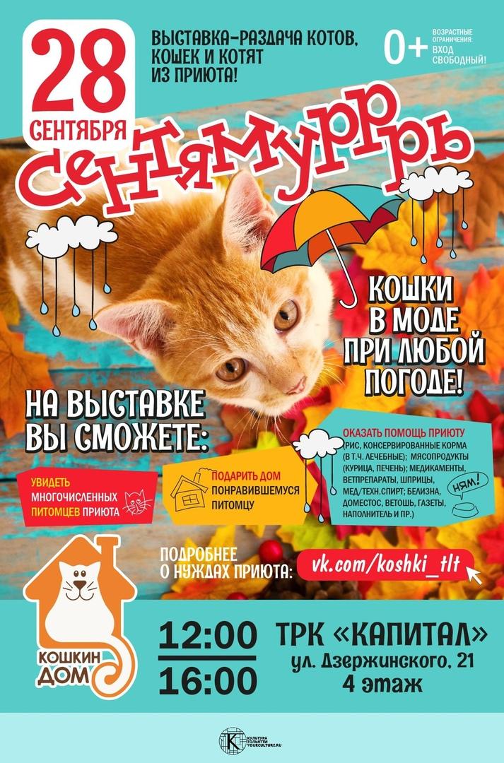 Благотворительная выставка-раздача питомцев приюта Кошкин дом