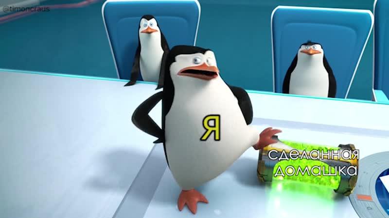 Пингвины из Мадагаскара прикол самоизоляция