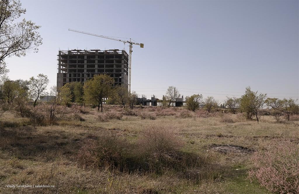 Пустырь в Парке Победы, Бишкек 2019