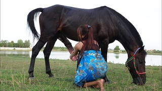 My sister basic cleaning with care her lovely horse