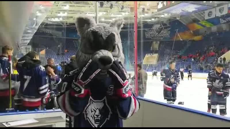 Волк шлет воздушный поцелуй