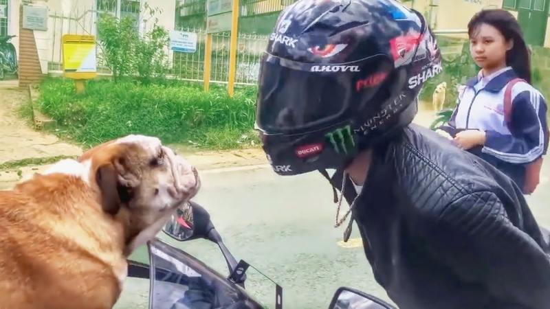 FUNNY, CRAZY WEIRD THINGS BIKERS SEE, SAY DO!