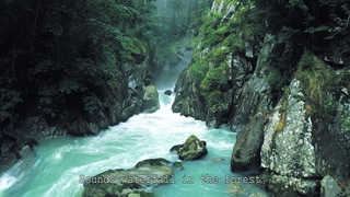 soothing sounds for sleep waterfall in the forest | успокаивающие звуки для сна водопад в лесу