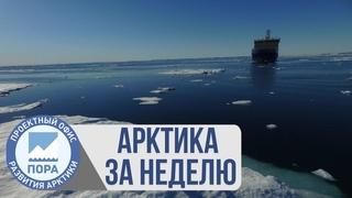 Арктика за неделю: платформа «Северный полюс», спутниковый мониторинг, «зеленый» никель