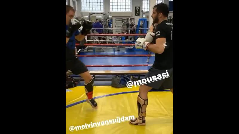 Mousasi training