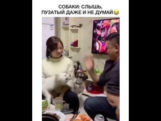 Маму надо защищать)