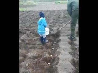 Приучает ребёнка к труду