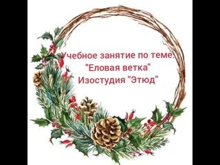 Этюд. Еловая ветка. рук.Михайлова Е.П.