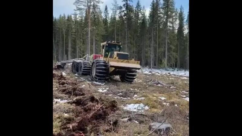 Гусеницы и цепи для ЛЗК т 89210169000 ммм