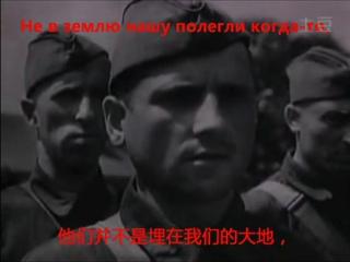 苏联歌曲 鹤群