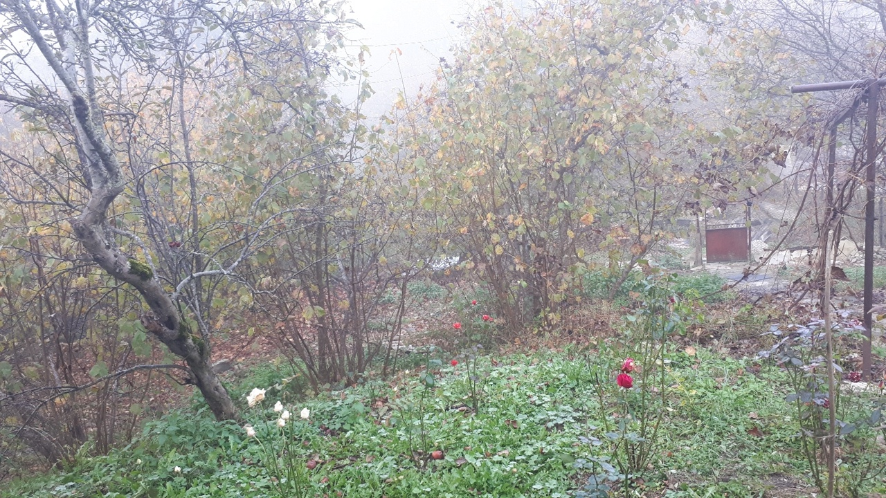 фото из альбома Анастасии Вербицкой №4