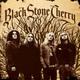 Black Stone - Fifty Watts
