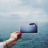 Фотография Лианы Тонковой ВКонтакте