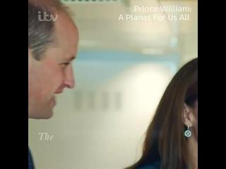 Принц Уильям: планета для всех нас