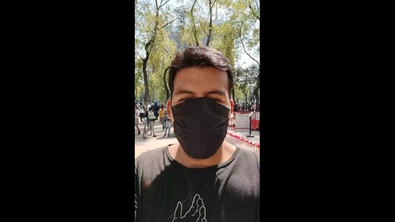 Visitando el planton de marihuana 🚬 en Ciudad de México 🇲🇽 🇰🇷 Senado de la Republica