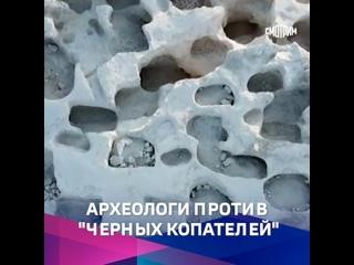Расхитители гробниц. Специальный репортаж