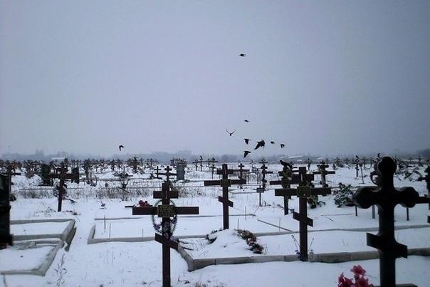 Читинец пожаловался на близость человеческих могил к жилым домам в Атамановке