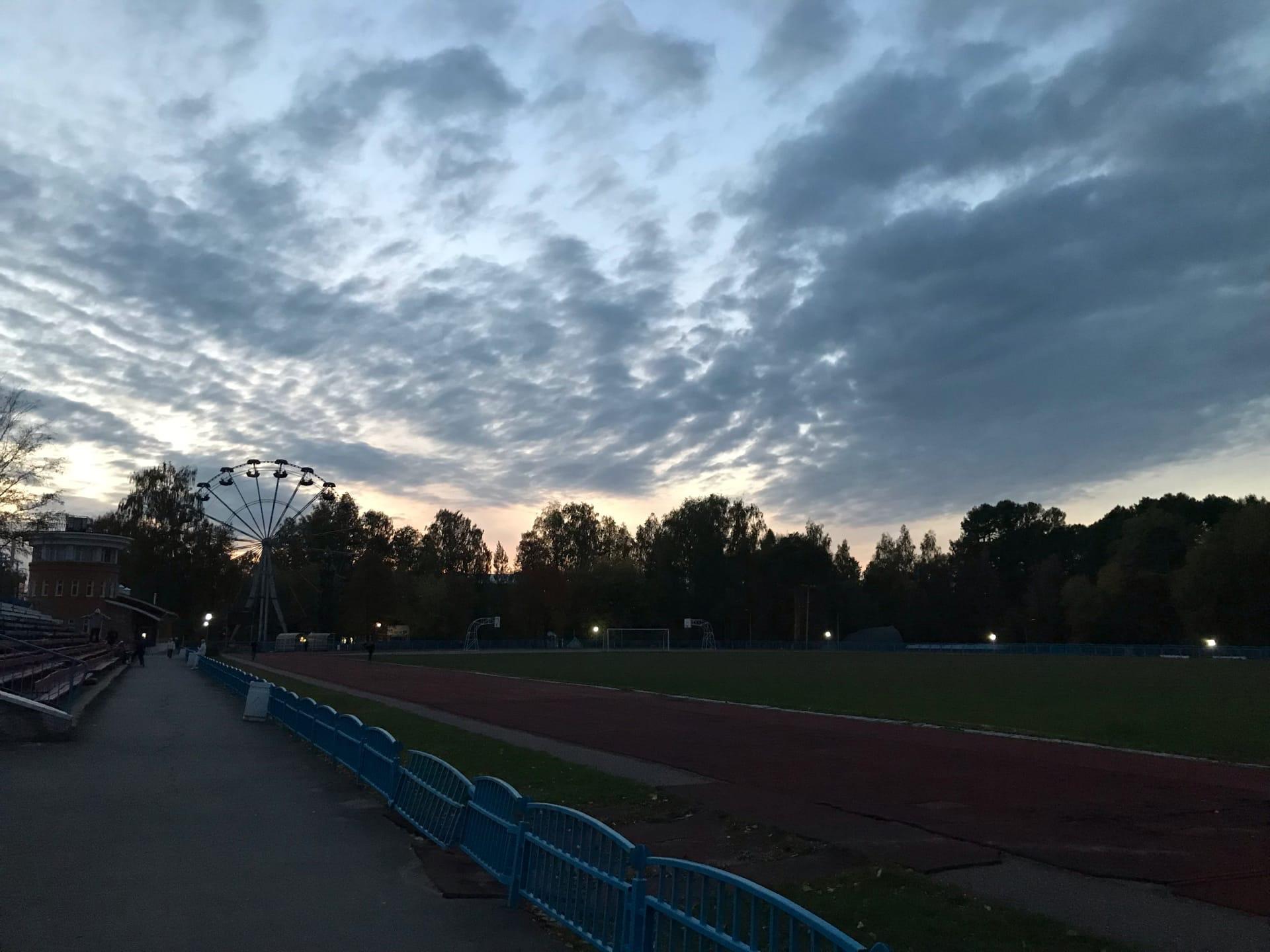 Вечерний парк вам в ленту Спокойной ночи,