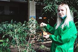 Волонтёры посадили деревья в честь годовщины акции «#Мывместе»