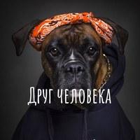 Витек Борисов