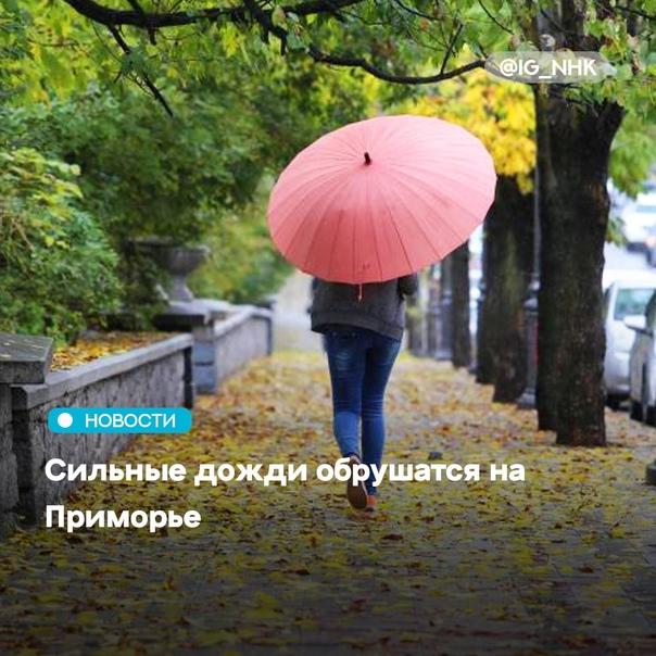 В Приморье 21 и 22 сентября ожидаются сильные дожд...