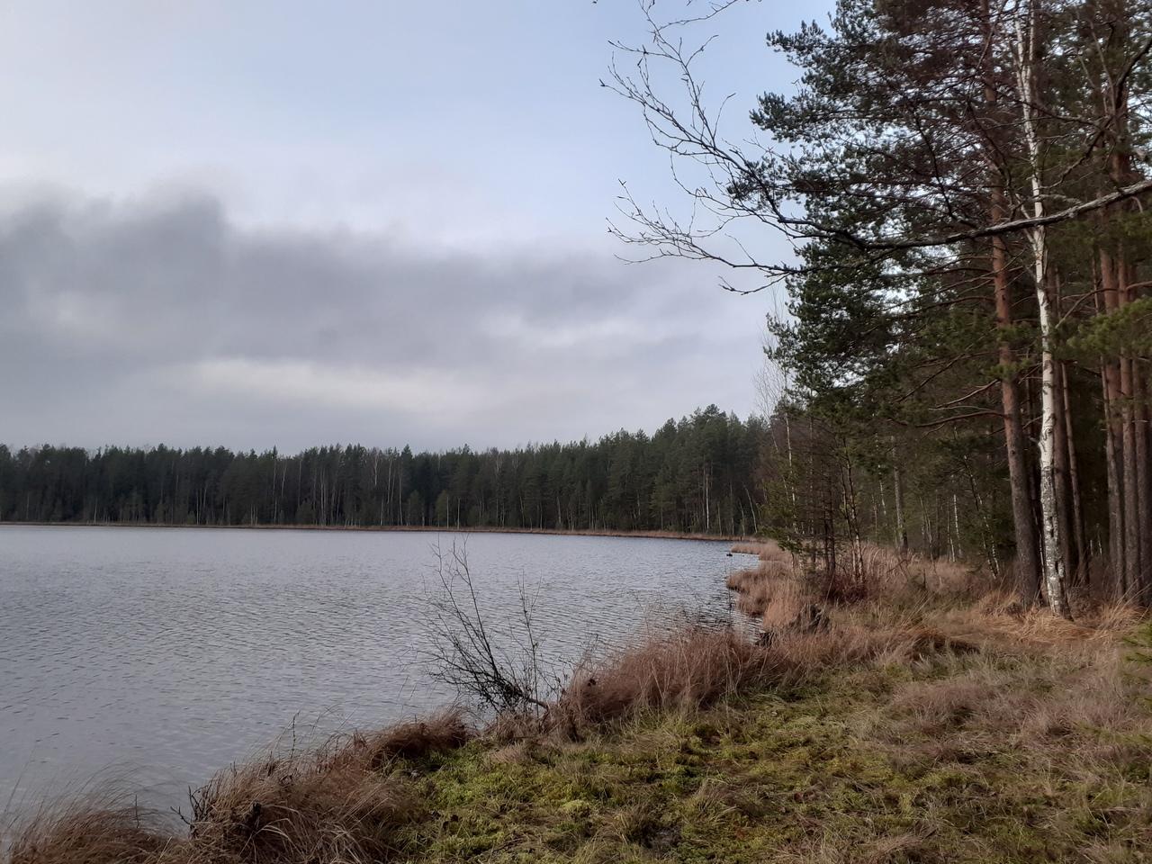 Первые дни зимы на Карельском перешейке. 47 км - река Грузинка - озеро Белое. ДОТы времен войны