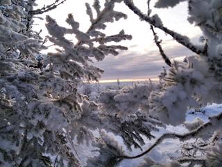Гора Шунут (Свердловская область)
