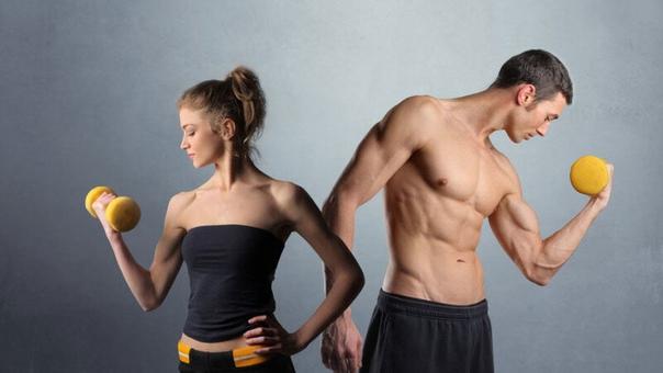 Как женский метаболизм отличается от мужского и что с этим делать