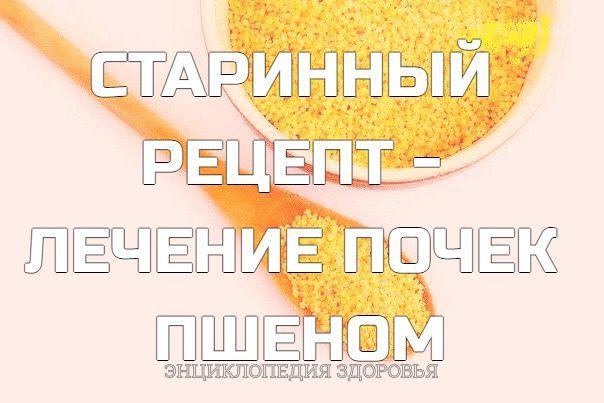 СТАРИННЫЙ РЕЦЕПТ - ЛЕЧЕНИЕ ПОЧЕК ПШЕНОМ