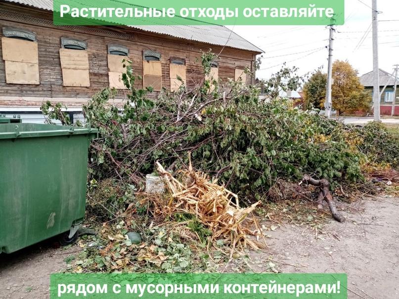 Растительные отходы оставляйте рядом с мусорными контейнерами! 🌳