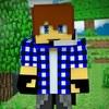 Mr_dsa1   Minecraft