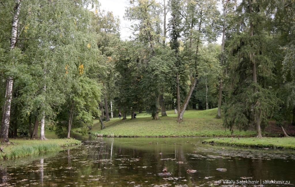 Пейзажи Дворцового парка в Гатчине, путешествие 2020