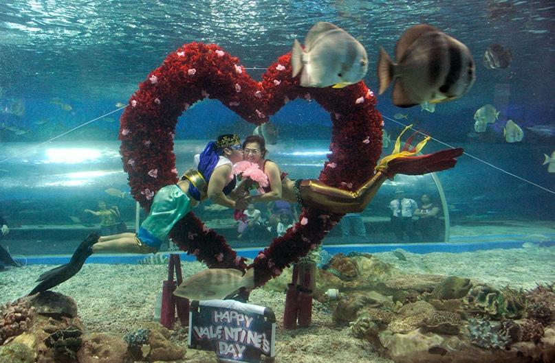 УДИВИТЕЛЬНО, НО ФАКТ… (Часть 55) (спецвыпуск: «Традиции празднования Дня святого Валентина»), изображение №33