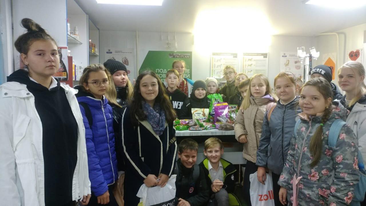 Можгинские школьники помогают бездомным животным!
