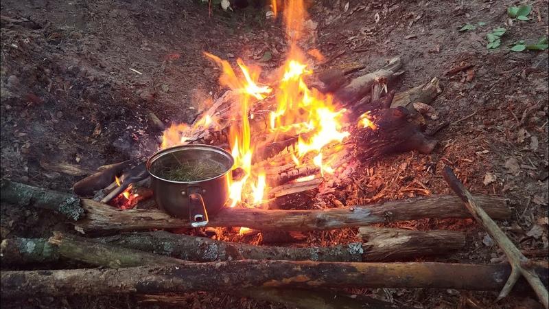 Строим землянку укрытие типа блиндаж Ночуем в лесу с костром нодья