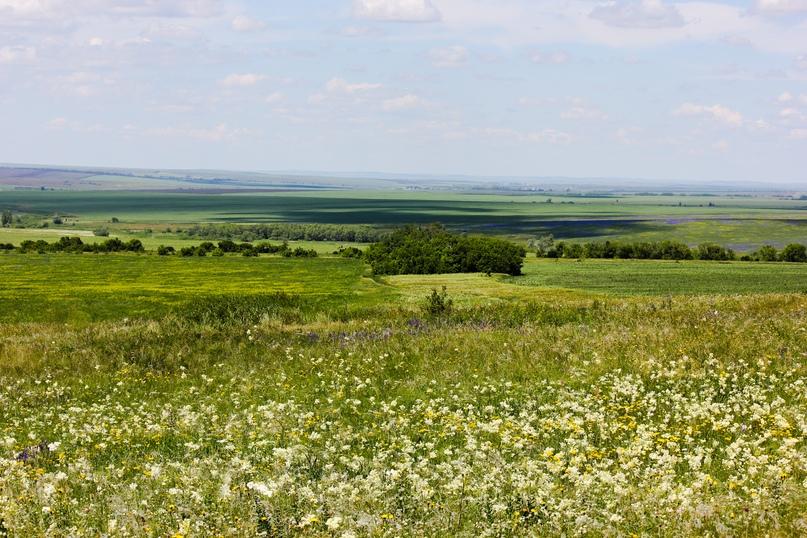 Экспедиционная оценка эффективности землепользования в Оренбуржье, изображение №15
