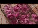 4월 봄 진달래 진달래 화전 만드는 법 flower rice cake JinDalLae HwaJeon ceramicdo 세라믹도 печенья с азалией
